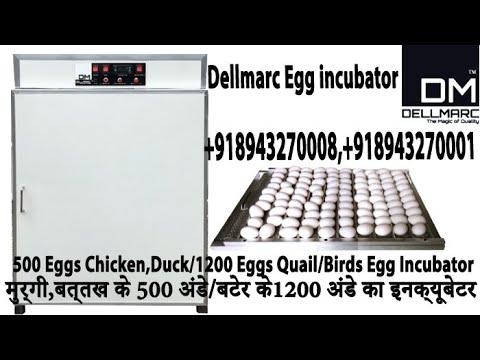Egg Hatching Machines - Egg Hatchery Machine Latest Price