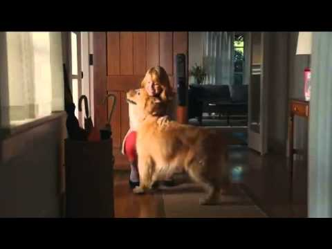 Milk Bone Commercial (2013) (Television Commercial)