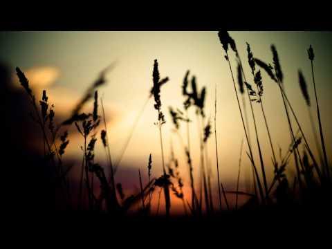 Silver Springs (Song) by Elsie