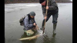 Поймал щука на жерлицы в украине
