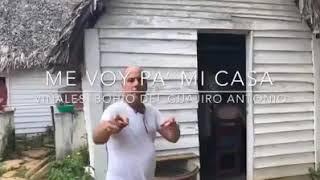 """""""Me Voy Pa´ Mi Casa"""" Al Ritmo De Cimafunk  El Profesor Cubano Carlos Lazo Se Va Con Sus Alumnos"""