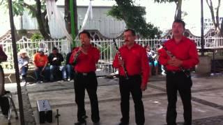 EL PAJARO BURLON - La Tradicional De Mazatlan