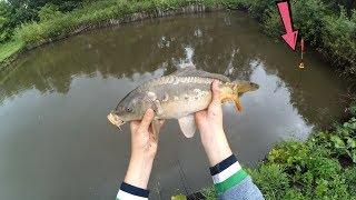 Рыбалка на карася в своем пруду