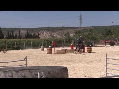 Equitación de Trabajo 280821 Video  Velocidad 4