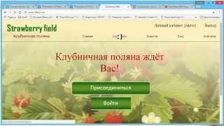 Straw-field Клубничная поляна Ссылка на регистрацию + обзор проекта!