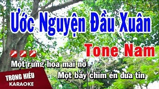 karaoke-uoc-nguyen-dau-xuan-tone-nam-nhac-song-trong-hieu