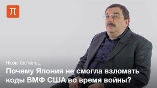 Языковые универсалии - Тестелец