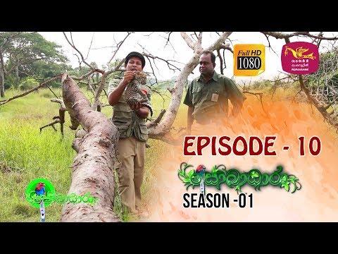 Sobadhara | Season - 01 | Episode 10 | Sobadhara Rupavahini
