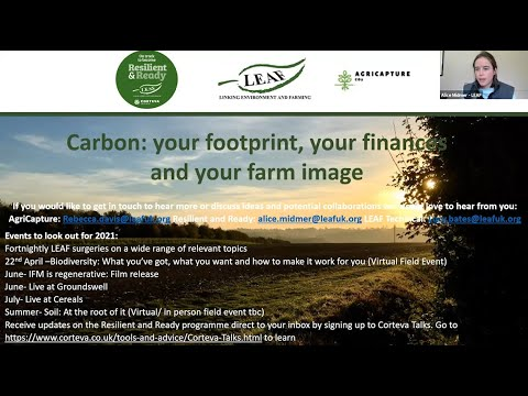 Carbon Virtual Field Day