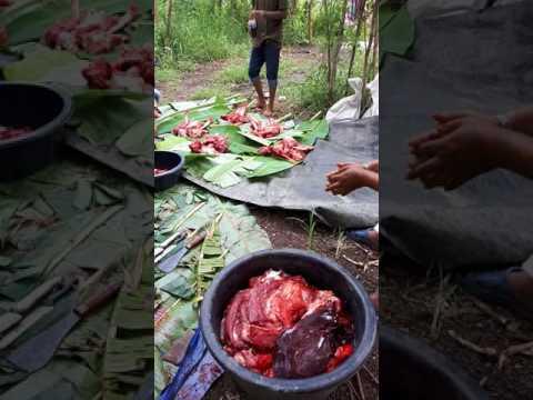 กระเทียมและปรสิตใน ogulovu