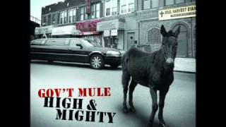 Government Mule: Endless Parade
