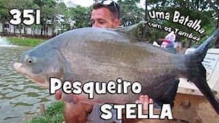 Programa Fishingtur na TV 351 - Pesqueiro Stella