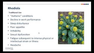 Part 2 - The Stress Response Women s Health and The Role of Adaptogens