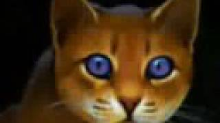 The Warrior Cat Movie