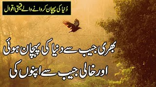 Beautiful Quotes In Urdu | Best Urdu Quotes Status | Heart Touching Quotes About Life In Urdu |