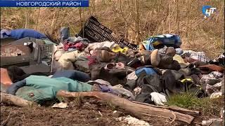 В Новгородском районе прошел рейд прокуратуры и других ведомств по несанкционированным свалкам