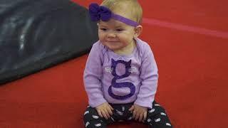 Gymcats Free Baby Gym Class