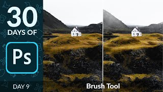 How to Use the Brush Tool in Photoshop | Day 9