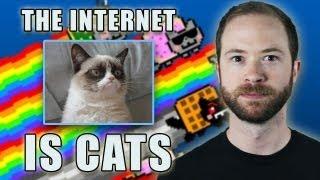 Is the Internet Cats? | Idea Channel | PBS Digital Studios