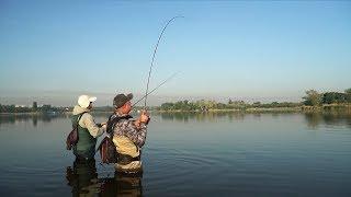 Запрещенная снасть в украине для ловли окуня