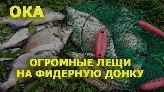 Рязанский рыболовный форум отчеты с водоемов