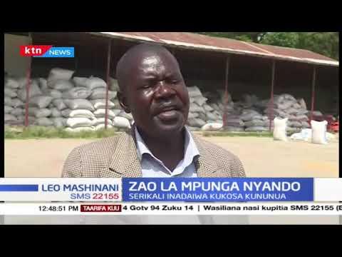Zaidi ya wakulima 600 walalama Nyando kuhusu soko la mpunga wao