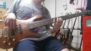 Beyond the gray sky - 311 (bass cover)