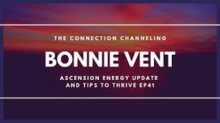 Leaving the Spiritual Nest and Returning to Base State  - Bonnie Vent Channeling - Session 41