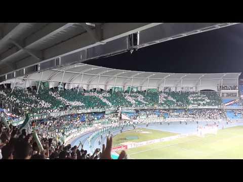 """TIFO Frente Radical - Cali 0 vs Peñarol 1"" Barra: Frente Radical Verdiblanco • Club: Deportivo Cali"