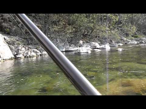 Esche per pesca invernale