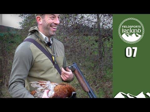 Wonderful walked-up pheasants  – Fieldsports Ireland, episode 7