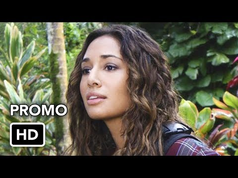 Hawaii Five-0 8.05 (Preview)