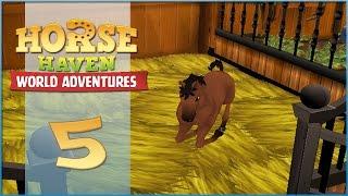 Horse Haven || Breeding Apollo & Scarlet Apple! - Episode #5