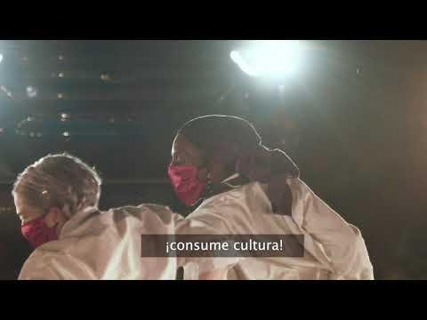 Consume Cultura Segura