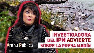ArenaDocs | Madín: Una lucha por la preservación