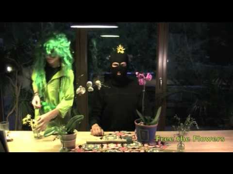 Blumenkübel in Neuenkirchen - Bekennervideo
