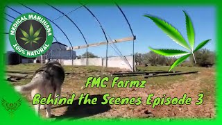 FMC Farmz cleanup and behind the scenes episode 3
