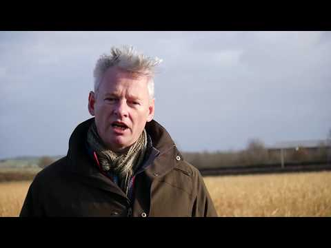 Farmers on the benefits of cover crops