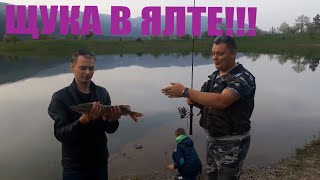 Рыбалка в ялте ялта