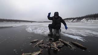 Зимняя рыбалка на реке лене