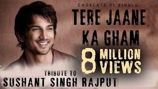 Tere Jaane Ka Gham - Tribute To Sushant Singh Rajput