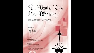 Lo, How a Rose E'er Blooming (SATB) - arr. Jay Rouse