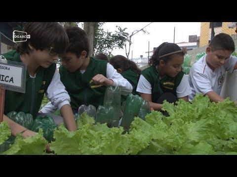 Escola são-bernardense fomenta educação ambiental