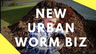 My Urban Vermicompost & Compost Business Start Up Vlog