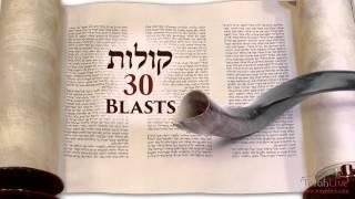 Understanding the Shofar Blasts on Rosh Hashanah