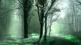Chicane - Poppiholla (Original Mix)