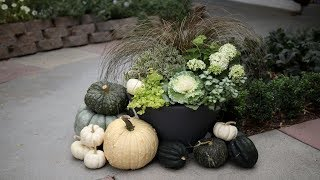 An Elegant Container for Fall, or Anytime!
