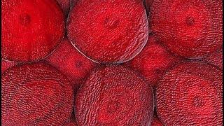 7 неожиданно вкусных САЛАТОВ из обычной СВЁКЛЫ