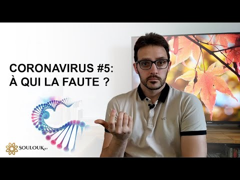 Coronavirus #5 : À qui la faute ?