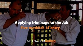 Applying Iriminage To The Jab: 5 Methods Of Entry.